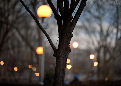 Lights in Washington Square Park at Dusk