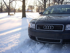 Quattro enjoys snow