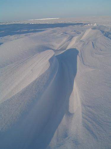 arctic desert 4