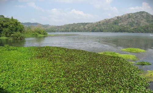 río Chagres