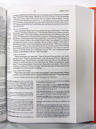 ESV Study Bible Mock-Up 3