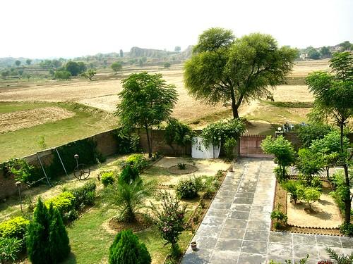 Dadi's Madrasah - Garden