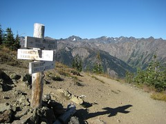 26 - View from Marmot Pass