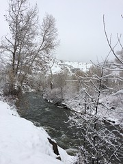 IMG_2198 (augiebenjamin) Tags: winter provocanyon mountains orem provo lindon utah snow clouds trees sky byu brighamyounguniversity art