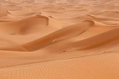 Between Foum Zguid and Mahmid : Iriki, Chigaga Erg, Chebbi Erg, Maroc (Morocco) (Loc BROHARD) Tags: africa sahara vent sand desert dunes dune sable tent camel morocco berber sandstorm maroc maghreb camps bou caid erg tempete merzouga erfoud westernsahara draa chegaga mhamid chebbi nomades oued valleyoftheroses iriki chigaga foumzguid oueddraa ergchigaga tempetedesable  almarib  campdesdunes tentecaidale  mhamid campsnomades ergcamp laalaglamdaouar sghirerg rhoualerg mhazilerg lebidliyerg sedraterg smarhassi abiodhassi bouajaj campdudsert campsdesdunes