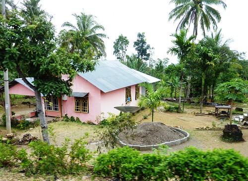 Timor Ouest-Kupang-Kefa (49)