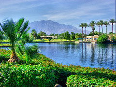 Palm Springs (Mine Beyaz) Tags: blue mountain lake green palmsprings palmtrees 10faves naturewatcher theperfectphotographer minebeyaz