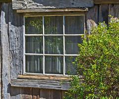 Bush hut window. (dicktay2000) Tags: photofaceoffwinner pfosilver
