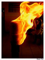 Fire (Fábio P.S.) Tags: color macro paraná brasil fire nice close fogo quente calor 100faves 10faves olympusfe100 x710 fabiorosario rosáriodoivaí