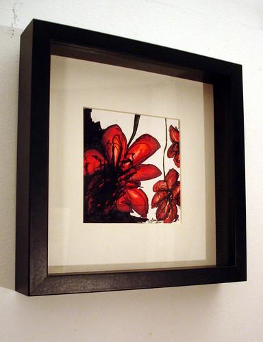 ornamental WILDflowers - no 1 -