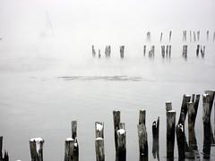 sea smoke 1
