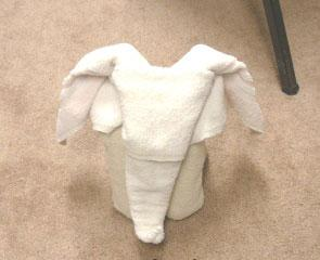Towel Elephant 16