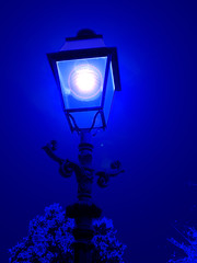 midnight blue (marcel patti~) Tags: blue art netherlands lamp dutch catchycolors marcel europe explorer echo den patti nederland denhaag midnight flare haag 2008 whimsey lampu oudjaar midnightblue belanda inspiredbylove marcelpatti marcelpattiradjawane frommylensthroughyoureyes