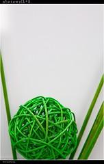 Photowalk 2008-04-19 green ball (tine_stone) Tags: friends flickr events carinthia event 1d photowalk tine klagenfurt markiii photomarathon photowalkaustria8 photowalkat19042008 upcoming:event=469519 pw08t04