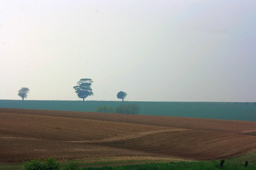Horizon, The Wolds, Yorkshire