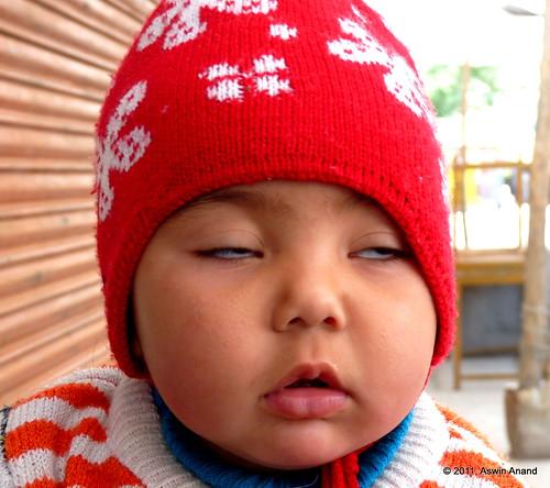 Chubby Ladakhi baby