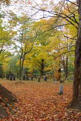 Alstead cemetery