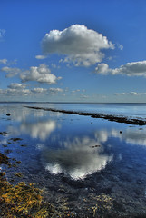 Newton's Cloud (petervanallen) Tags: cloud seaweed reflection pool beautiful rock relaxing weymouth newton contemplation petervanallen