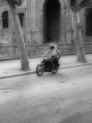Motorista de ayer, fotografa de hoy (Finidiblanco) Tags: new old blancoynegro sevilla seville andalucia moto motorcycle antiguo palzadeespaa efectoorton