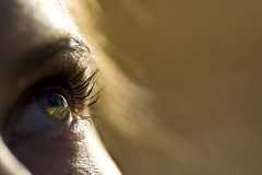 Auge (pigeon-photography) Tags: makro auge nahaufnahme