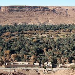 Oasis del Ziz (Ametxa) Tags: sahara desert morocco maroc desierto marruecos