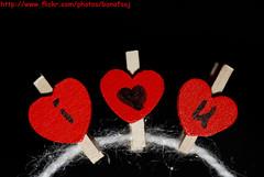 Luv me ? (Banafsaj_Q8 .. Free Photographer) Tags: life love club photography still nikon heart romance kuwait kw q8  bayt lothan kuw d80   banafsaj