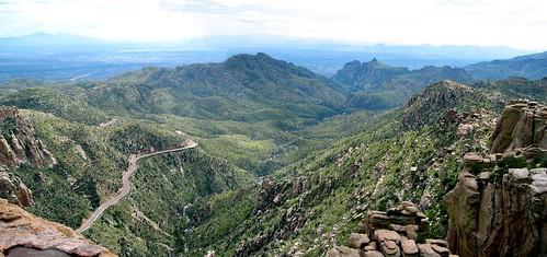 Tucson, AZ - Mt. Lemmon