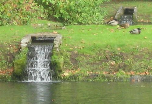 Welsh Ponds
