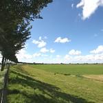 Beemster: Zuiddijk in landscape in summer