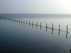 IMGP9769 (gzammarchi) Tags: lago italia natura palo paesaggio fila ravenna rete cose riflesso pianura monocrome recinto camminata itinerario parcodeltadelpo boscoforte santalbertora