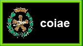 Colegio Oficial de Ingenieros Aeronáuticos