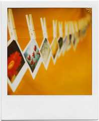 .story of my life. (andrenzo) Tags: orange color love film colors yellow composition polaroid sx70 photography photo many dream dreams intro expired 70 colori pola filo blend sx mollette pellicola istantanea scaduta istant introcoso andrenzo andreacolombo introvertevent colomboandrea