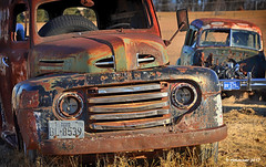 Lights Out_174372 (rjmonner) Tags: ford truckthursday rusted vehicle dilapidated rust gutted junk outtopasture metal manufactured panelvan 49ford antique retired tire missingglass nostalgia old relic weathered neglected busted broken aged outdated ravaged looted scrap salvage oxidized decay deteriorated