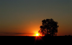 Apollo's Journey's End (mightyquinninwky) Tags: autumn sunset sky sun tree fall field clouds rural october colours farm silhouettes farmland pasture backroads smalltown westernkentucky ohiorivervalley smithmillskentucky hendersoncountykentucky