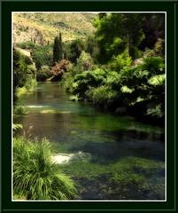 River in Ninfa Garden (fabilly74) Tags: reflexions ninfa naturalmente naturesfinest ortoneffect anawesomeshot aplusphoto favoritegarden newacademy thebestofgodscreation spiritofphotography flickrclassique