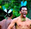 Maori Warriors BBMaui, Oahu, Hawaii.