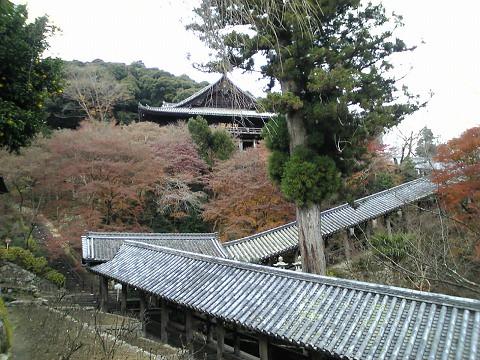 長谷寺-登廊と本堂