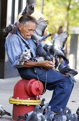 Joseph Zeman aka Pigeon Man R.I.P