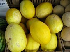 Cucumis melo cultivar (Eric Hunt.) Tags: sanfrancisco california food yellow melon ribbed cucurbitaceae cucumis koreanmelon cucumismelo