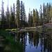 Lake Stewart Photo 13