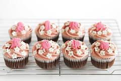 Baby Girl (LynnInSingapore) Tags: pink food cake dessert chocolate cupcake raspberry framboise fondant buttercream top20foodmmmm hidemisugino