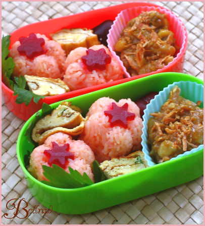 chicken curry bento