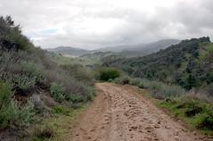 muddy & uphill