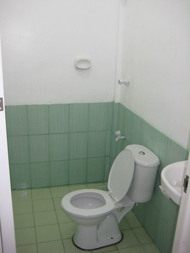 Yay for clean toilets!