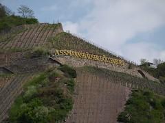 Rhine River Apr 08 080 (MurphMutt) Tags: castle germany rhineriver
