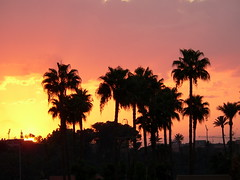 SOUS LE CIEL DE MARRAKECH (Andr Pipa) Tags: africa sunset pordosol sky cu explore ciel morocco cielo maroc marrakech soe marrocos themoulinrouge 50faves 10faves imagepoetry 5photosaday 35faves passionphotography 25faves mywinners abigfave worldbest platinumphoto anawesomeshot impressedbeauty ourplanet flickrenvy superbmasterpiece firsttheearth diamondclassphotographer ysplix focuslegacy betterthangood theperfectphotographer goldstaraward riadelfenn dragongoldaward rubyphotographer overtheshot