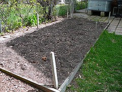 Garden Bed Before
