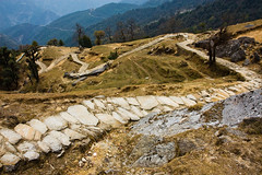 The Main Road (zachwass2000) Tags: india mountains trail uttaranchal himalaya uttarakhand pindariglacier pindarivalley