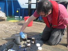 Jarring of Sediment Samples