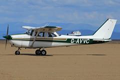 G-AVVC